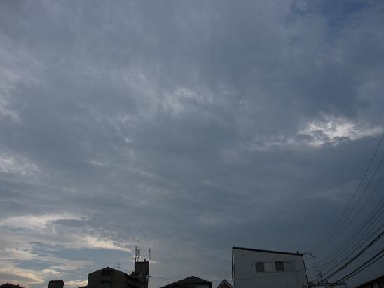 IMG-c_5689.JPG