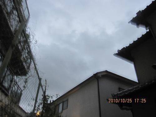 IMG-c_9864.JPG