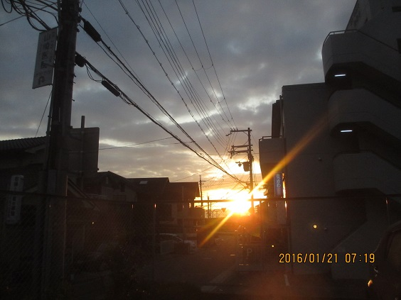 IMG_c0091.jpg