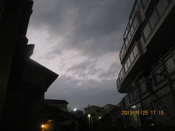 IMG_c5056.jpg