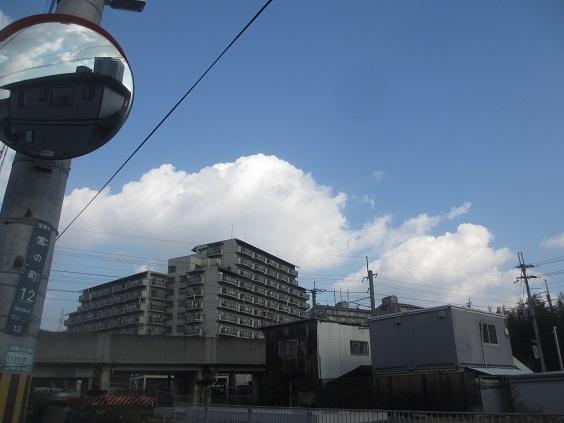 IMG_c6588.jpg