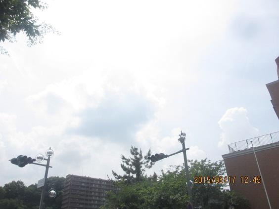 IMG_c8267.jpg