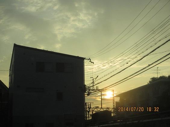 IMG_c8666.jpg