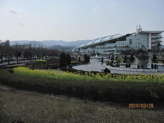 IMG-c_6572.JPG