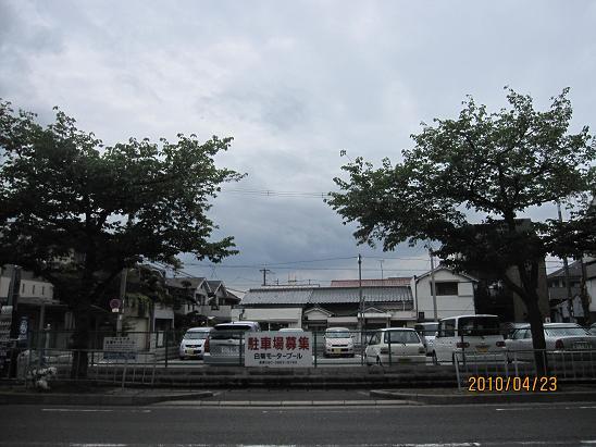 IMG-c_8617.JPG