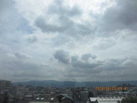 IMG_c6852.jpg